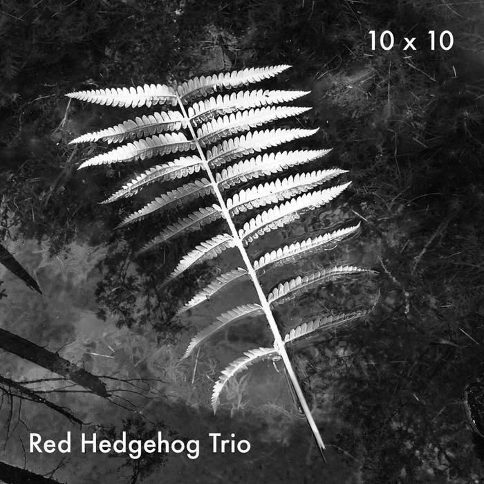 Red Hedgehog Trio 10×10 (2015)
